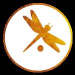 (icon 27)